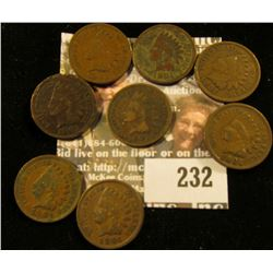 (8) 1901 Indian Head Cents.