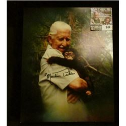 "946 _ 8"" x 10"" color, autographed photo of Marlin Perkins with a Chimpanzee."