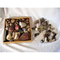 Lot of Stones, Petrified Wood, Fossils