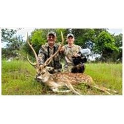 3 Day White Tail Deer and Exotic Hunt in Texas