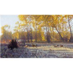"""Montana Gold"" by John Banovich"