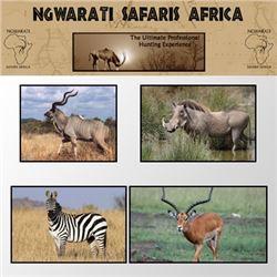 NGWARATI SAFARIS