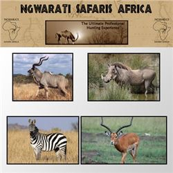 NGWARATI SAFARIS