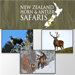 NEW ZEALAND HORN AND ANTLER SAFARIS