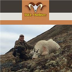 D & L OUTFITTERS