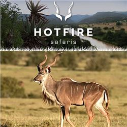HOTFIRE SAFARIS