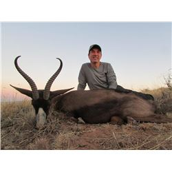 Six Day South African Springbok Slam Plains Game Hunt  for Two  Hunters