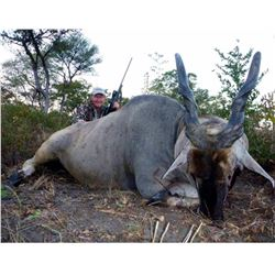 Seven Day Namibia Eland and Giraffe Hunt for One Hunter