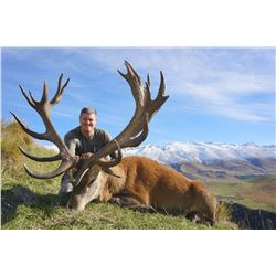 5 Day New Zealand Red Stag Hunt for One Hunter and One Observer