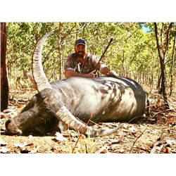 Four Day Australian Buffalo Hunt for One Hunter