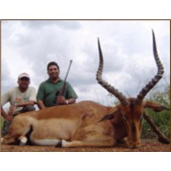 Six-day Hunt for 2 Hunters in South Africa taking 2 Impala, 2 Warthog and 1 Kudu or 1 Zebra
