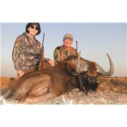 Twelve Day  South Africa Plains Game Hunt for Two Hunters