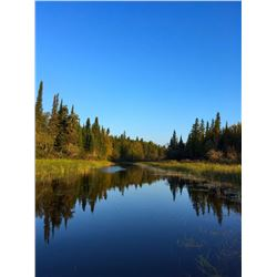 Northern Fishing Experience for 1 Angler - $1,500