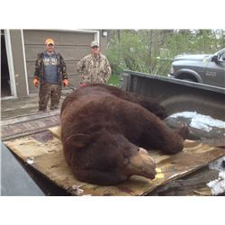Black Bear/Fishing Combo Package for 1 Hunter - $2,000