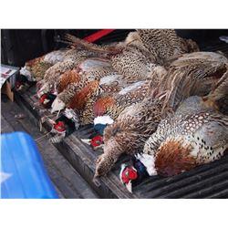 Wisconsin Pheasant Tower Shoot - $4,000