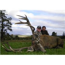 Scottish Red Stag with Airfare - Over $8,000 / Exhibitor