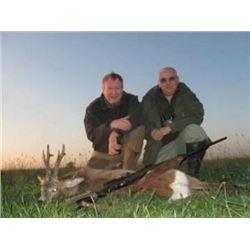 Serbia Roe Deer for 2 - $6,600