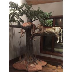 Taxidermy Credit - $3,000 / Exhibitor