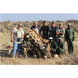 2x1 Rifle Hunt for 2 African Bull Giraffes for 2 Hunters - $7,000 / Exhibitor