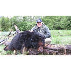Sitka Black Bear Hunt for 1 - $7,500