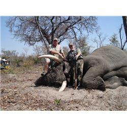 Zimbabwe Non-Trophy Elephant Bull Cull Safari - $15,000 / Exhibitor