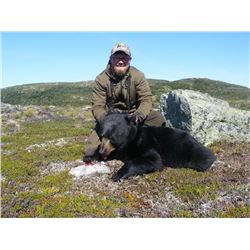 Newfoundland Moose & Black Bear - $8,500