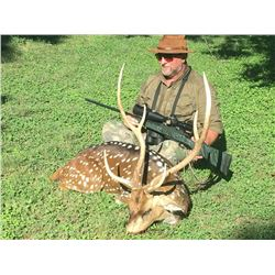 Axis Buck and Wild Hogs - $4,850