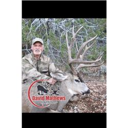Arizona Archery Mule Deer for 1 Hunter - $5,000