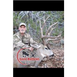 Arizona Archery Mule Deer for 1 Hunter - $5,000
