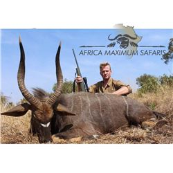 South Africa Sable Antelope and Nyala for 2 Hunters and 2 Observers - $25,790 / Exhibitor