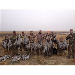 Texas: 3 Day 3 Night West Texas SandHill Crane Hunt for Two Hunters