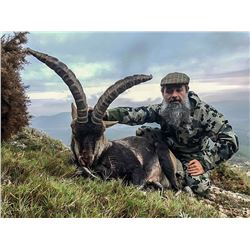 Spain: 4 Day 3 Night Bronze Medal Beceite Ibex Hunt for One Hunter