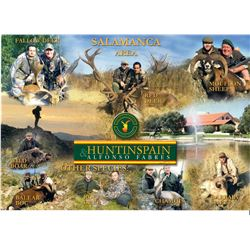 Spain:Trophy Big Game for 1 Hunter/Includes 1 of the following Roe, Red Deer, Fallow Deer or Mouflon
