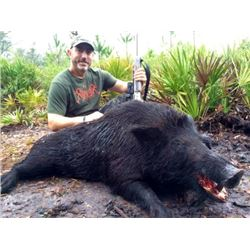 Florida: 1 ½ Days and 1 Night Hog-Dogging Wild Boar Hunt for Four Hunters Includes the Trophy Fee fo