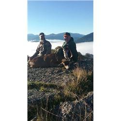 5 Day Blacktail Deer Hunt for 2 Hunters