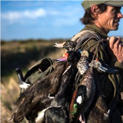 4 Day/3 Night, 6 Hunts High Volume Dove Shooting for Four People