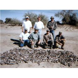 3 Day/4 Night Guided Dove, Quail, & Yellowtail Fishing  for Two Hunters & Two Observers