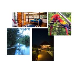 8 Day/7 Night Wild Belize at the Cotton Tree Lodge for Two People