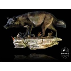 Life-size Taxidermy Mount Including Hardwood Base & Habitat Display