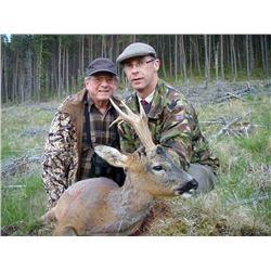 Scottish Estate Roe Deer Hunt for 1 Hunter