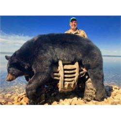 Alberta Black Bear Hunt with McKinnon & Co.