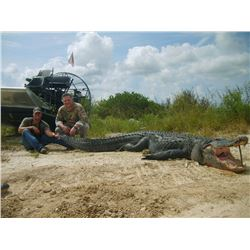 8' Alligator Hunt in Florida
