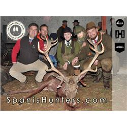 2-Day Monteria Driven Hunt with Spanish Hunters in Spain