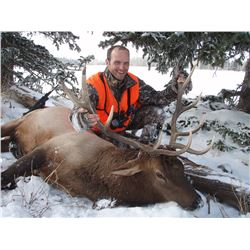 DIY Elk, Mule Deer & Black Bear hunt in Colorado