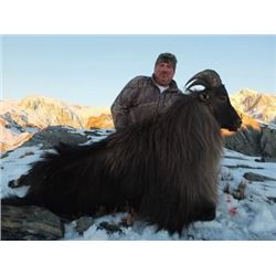 5-Day New Zealand Bull Tahr Hunt