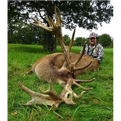 Scottish Red Stag for 1 Hunter