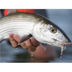 Bahamas - Bair's Lodge Bonefish Trip for 2 Anglers