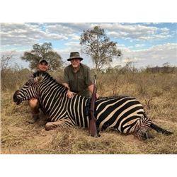 Zimbabwe - Mokore Safaris –Bushpig, Impala, Baboon