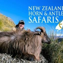 New Zealand Horn & Antlers Tahr Hunt