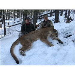 Northern Rockies Outfitters Ltd. Mountain Lion Hunt